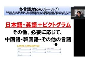 PDF_page-0004